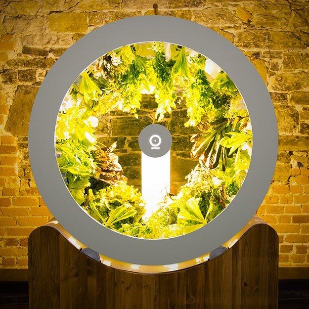 Voici OGarden Rotating Planter Wheel