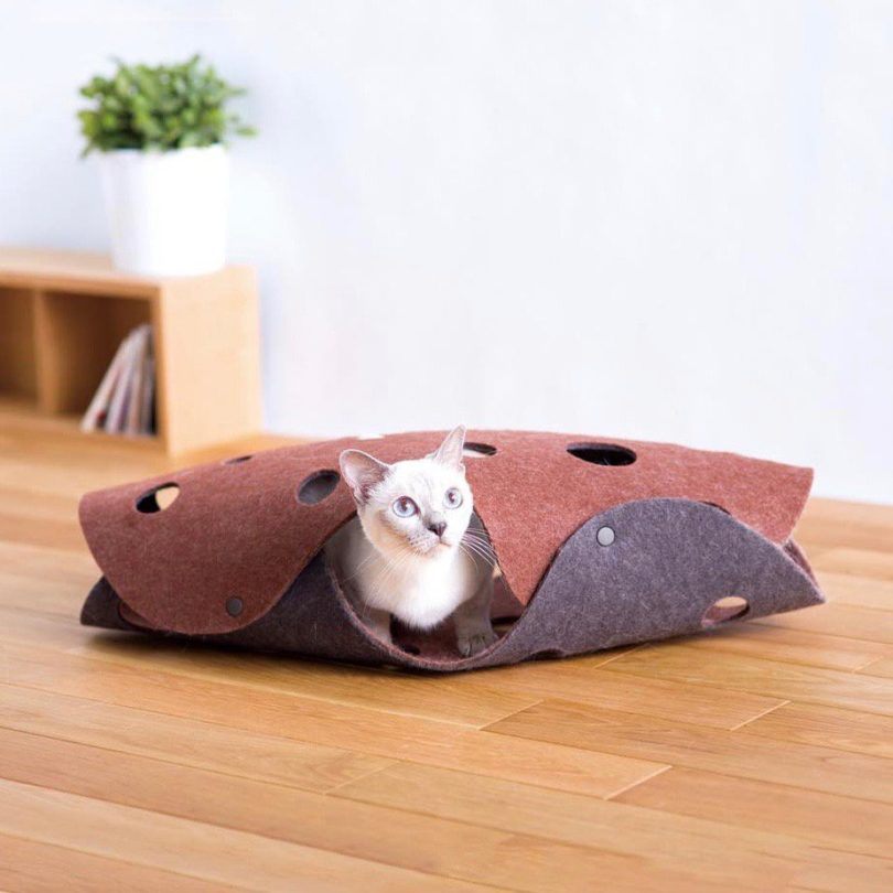 Oppo Fab Cat Tunnel