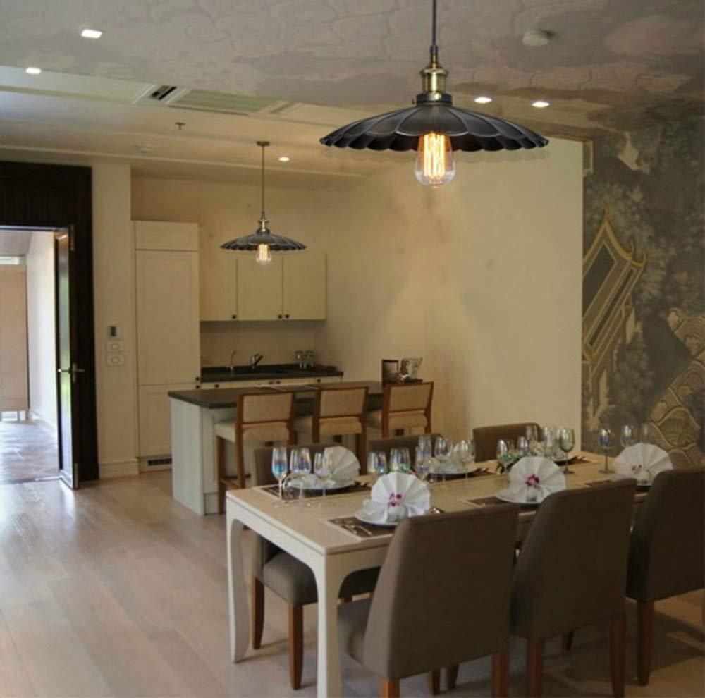 Hi-Lamp 1 Light Indoor Convertible Chandelier/Semi-Embedded Ceiling Fixture Black