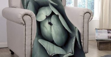 SCOCICI Super Soft Throw Blanket/Cactus Decor