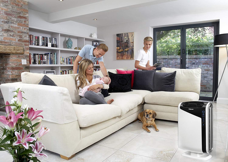 AeraMax 300 Large Room Air Purifier Mold