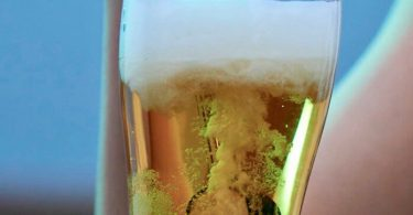 Ultrasonic Beer Foamer Stick