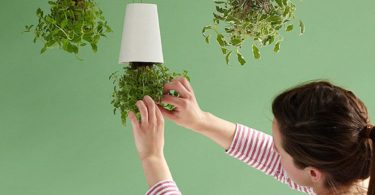 Sky Planter Inverted Flower Planter