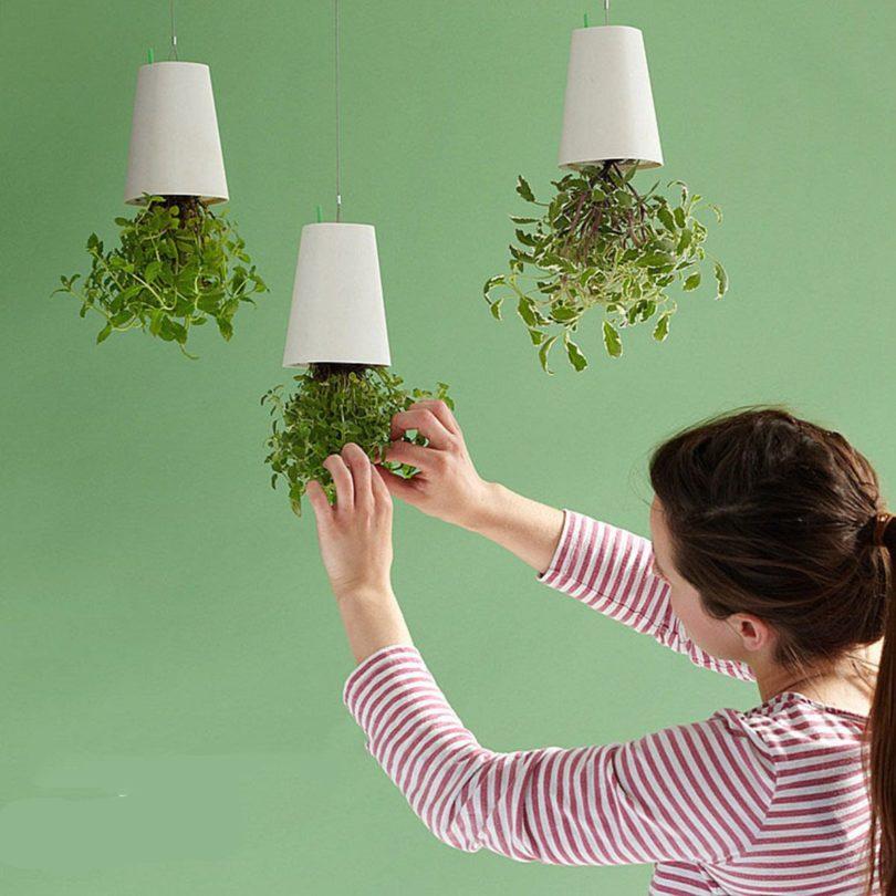Sky Planter Inverted Flower Planter