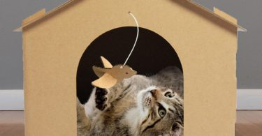 FurHaven Corrugated Cat Scratcher with Catnip