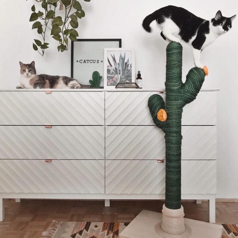 Cactus Cat Scratching Post
