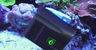 Robosnail Aquarium Cleaner