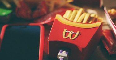 Wattz Up Fry or Die Charger