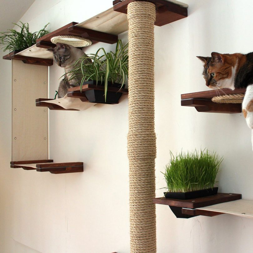 The Cat Mod Gardens Complex