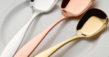 Luxe Singapore Serving Spoon
