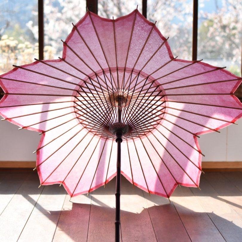 Sakura Wagasa Cherry Blossom Japanese Parasol