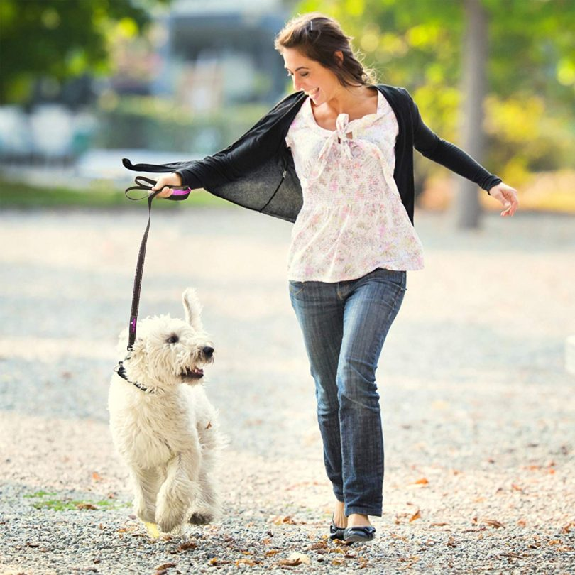 Paw Lifestyles Extra Heavy Duty Dog Leash