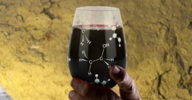 Chemist Approved Stemless Wine Glass