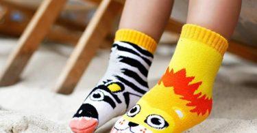 Lion & Zebra Mismatched Socks