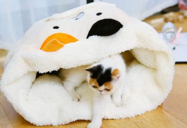 Sigetree Winter Crozy Pet Sleeping Bag Dog