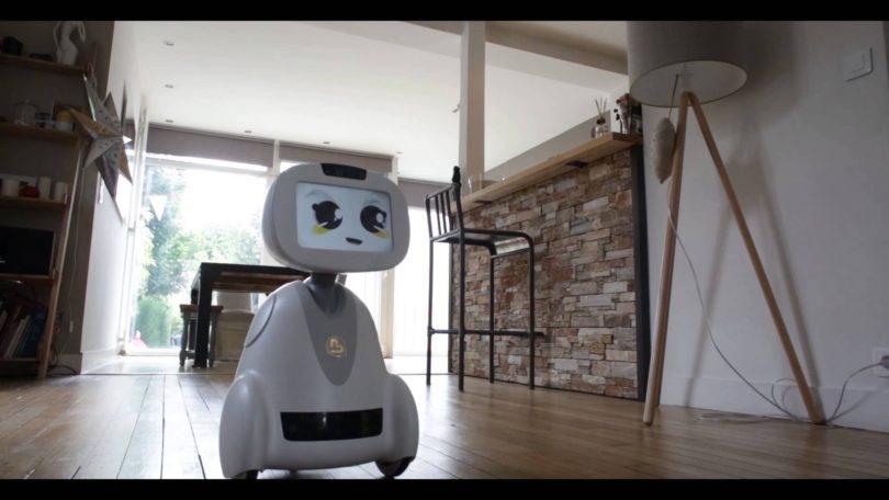 BUDDY – Your Family's Companion Robot