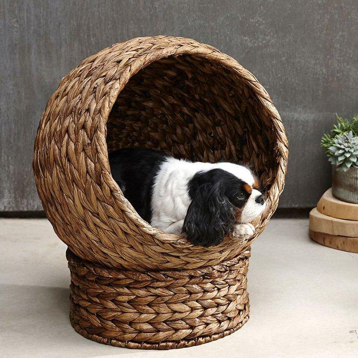 Plantan Pet Bed