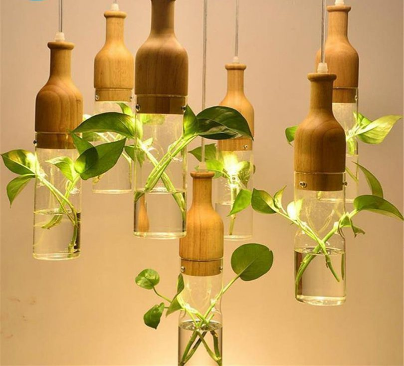 Wooden Led Plant Pendant Lights