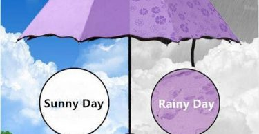 Purple Flower Color Changing Umbrella