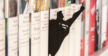 Superman Book Divider
