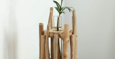 TRRAPLE Glass Vase Planter