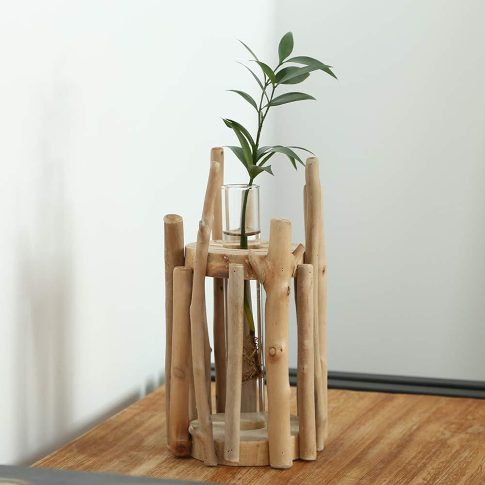 TRRAPLE Glass Vase Planter
