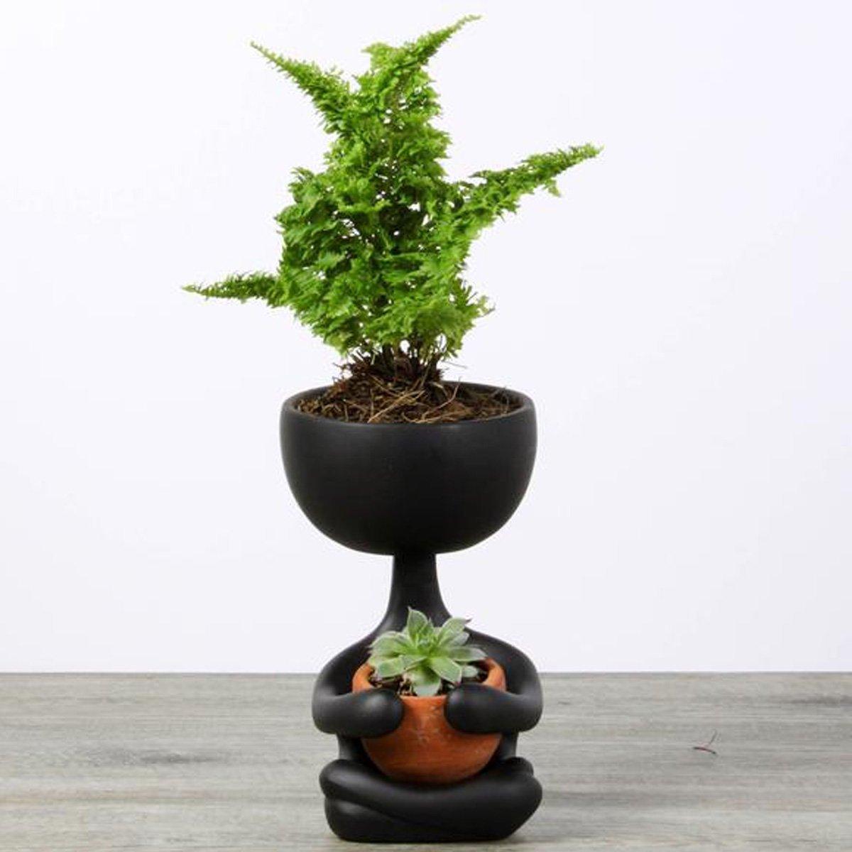 Robert Planta Zen