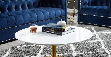 Decorific NYC Tulip Frame Coffee Table