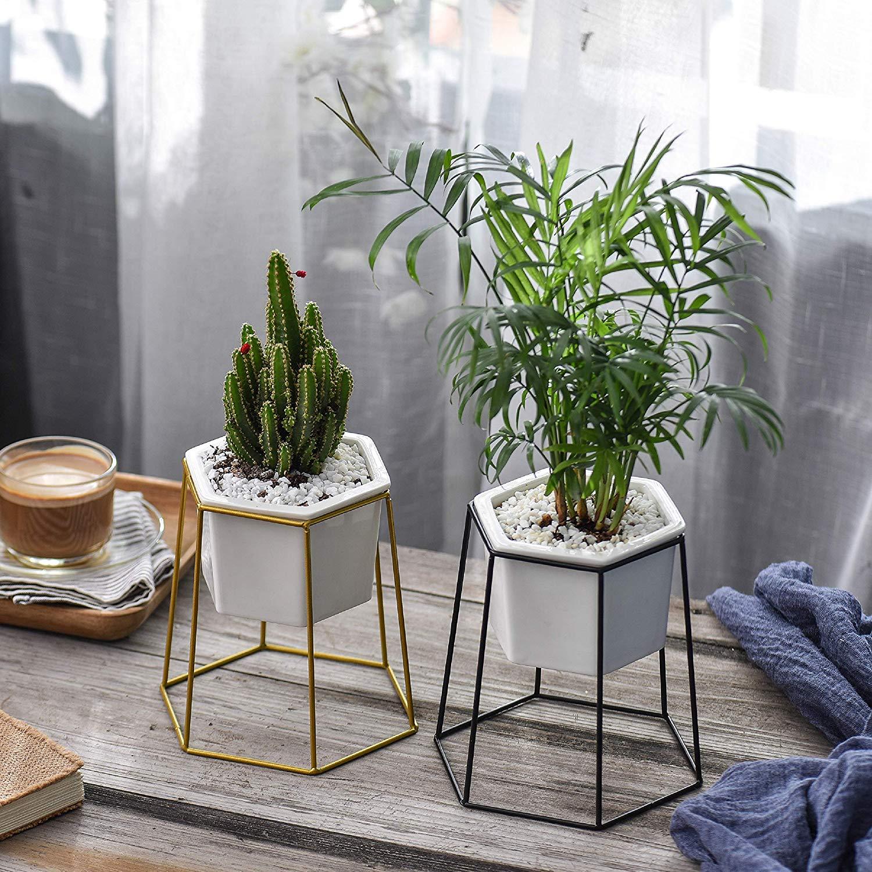Flexzion Succulent Flower Plant Stand