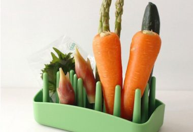 PLYS Veggie Mage Vegetable stand – Helps keep food in refrigerator fresh for longer