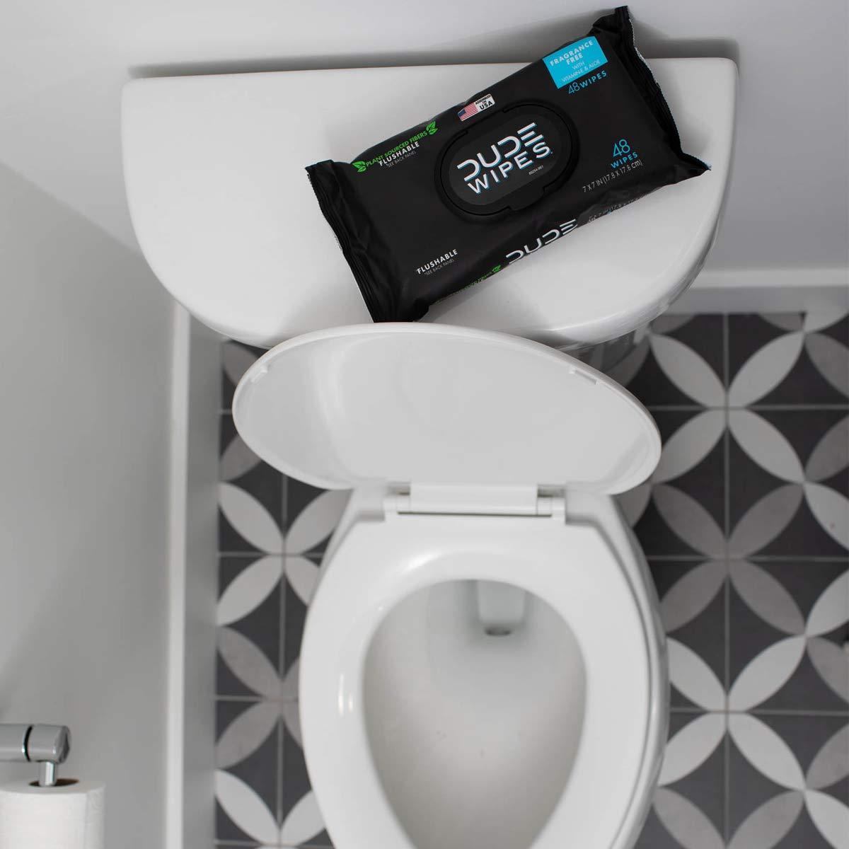 DUDE Wipes Flushable Wet Wipes Dispenser