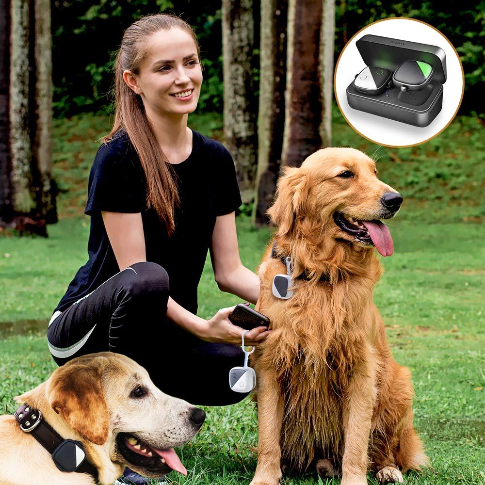 PETFON Pet GPS Tracker for 1-3 Dogs Pets