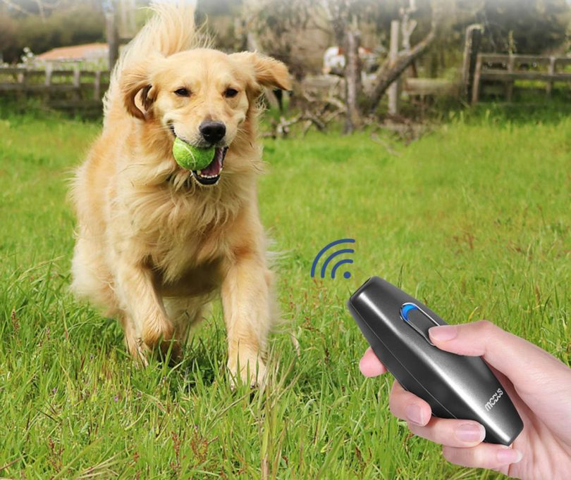 MODUS Bark Control Device – Ultrasonic Dog Bark Deterrent