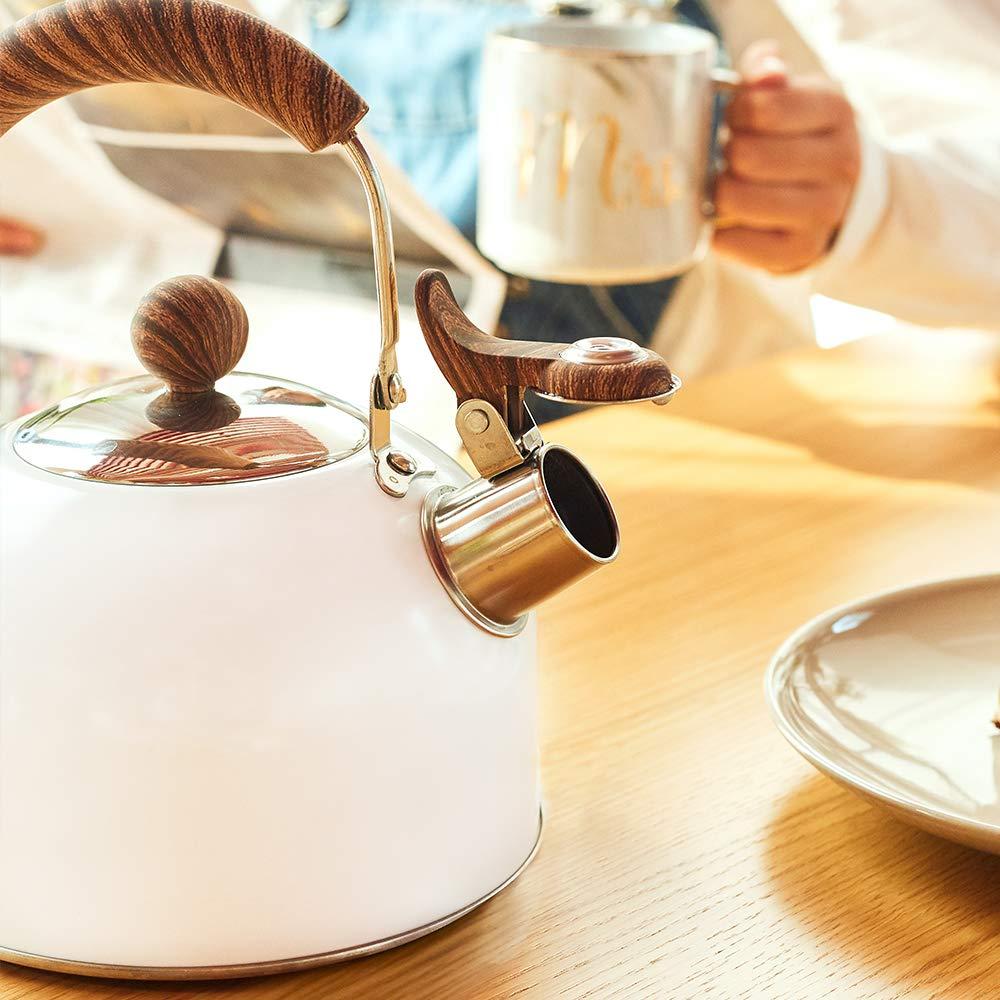 ROCKURWOK Tea Kettle
