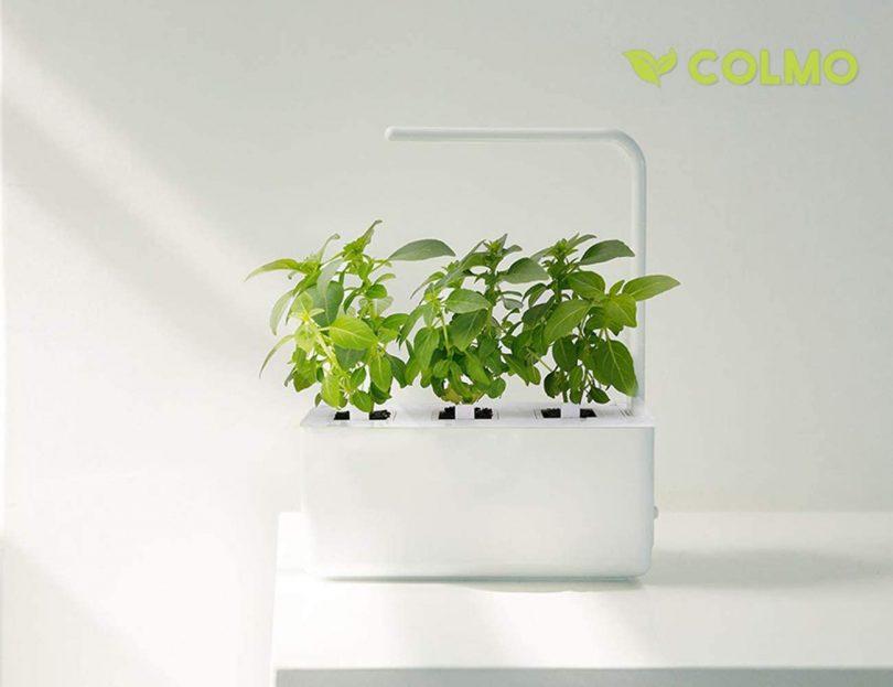 Indoor herb Garden kit with Spectrum LED