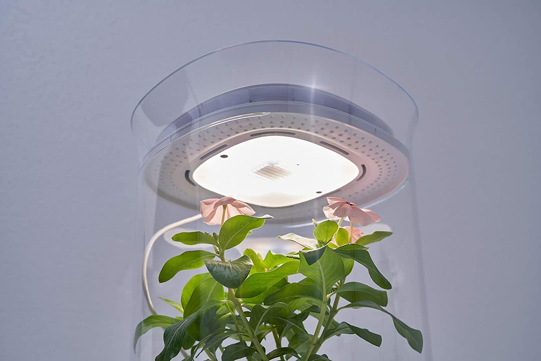 Bloomengine B100KHA Bluetooth Smart Indoor Planter