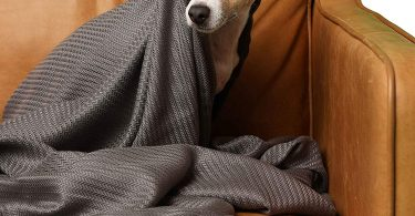 Sheets & Giggles – 100% Eucalyptus Lyocell Throw Blanket
