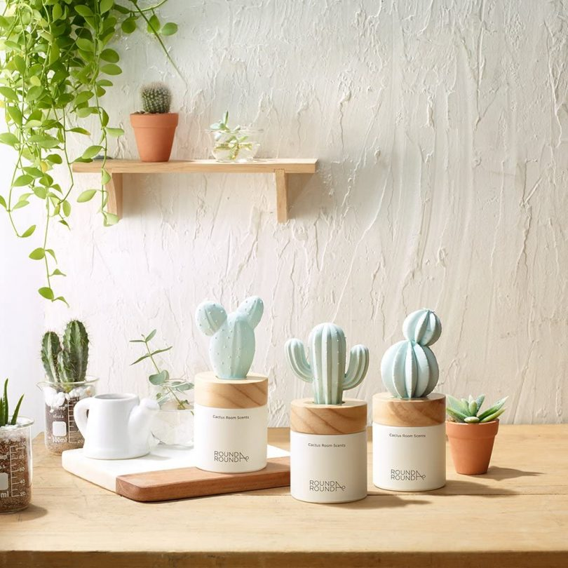 Cactus Room Scents
