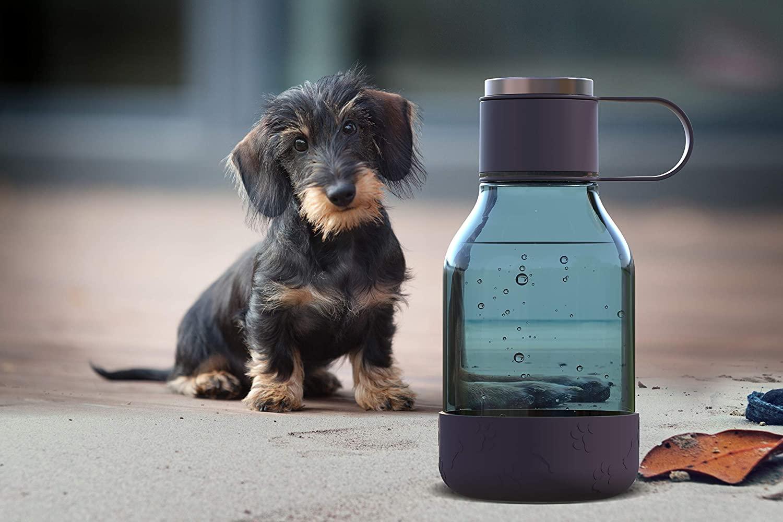 asobu Dog Bowl Attached to Tritan 1 Liter Bottle