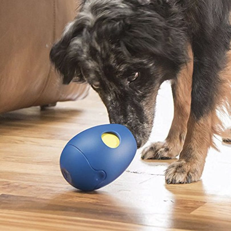 Orvis Tikr Treat Activity Toy for Dogs