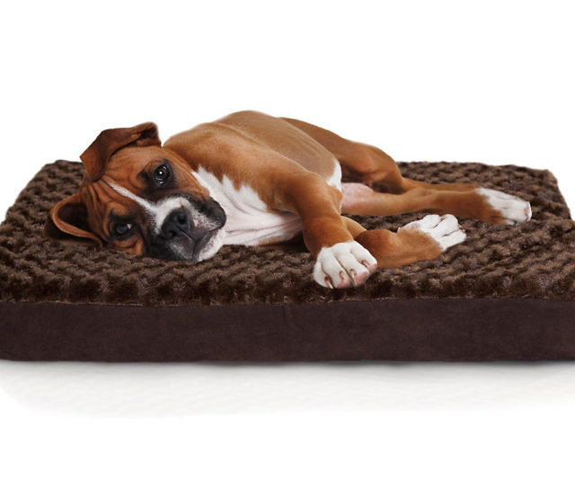 Orthopedic Mattress Pet Bed