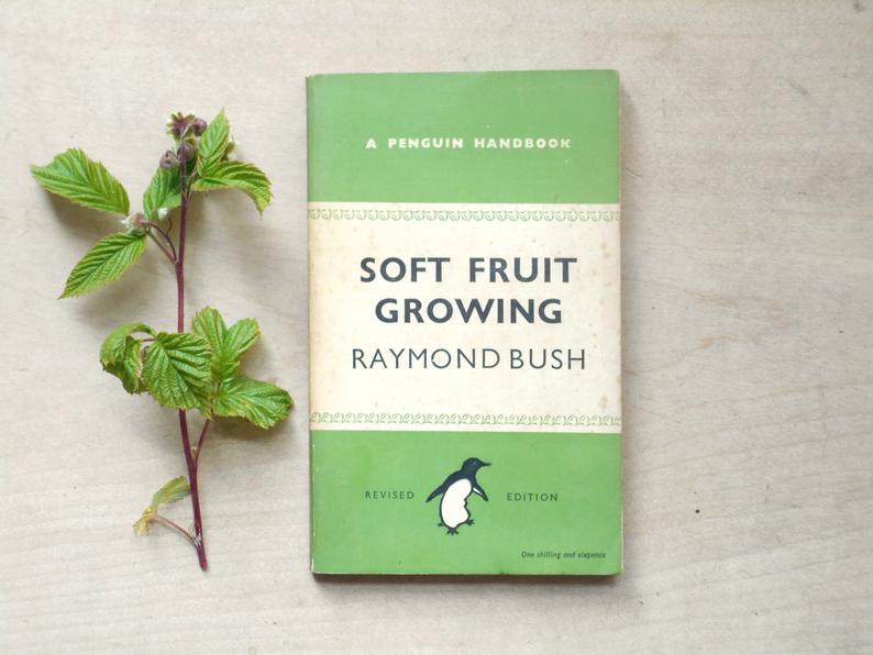 Penguin paperback 1940s gardening book Soft Fruit Growing gift