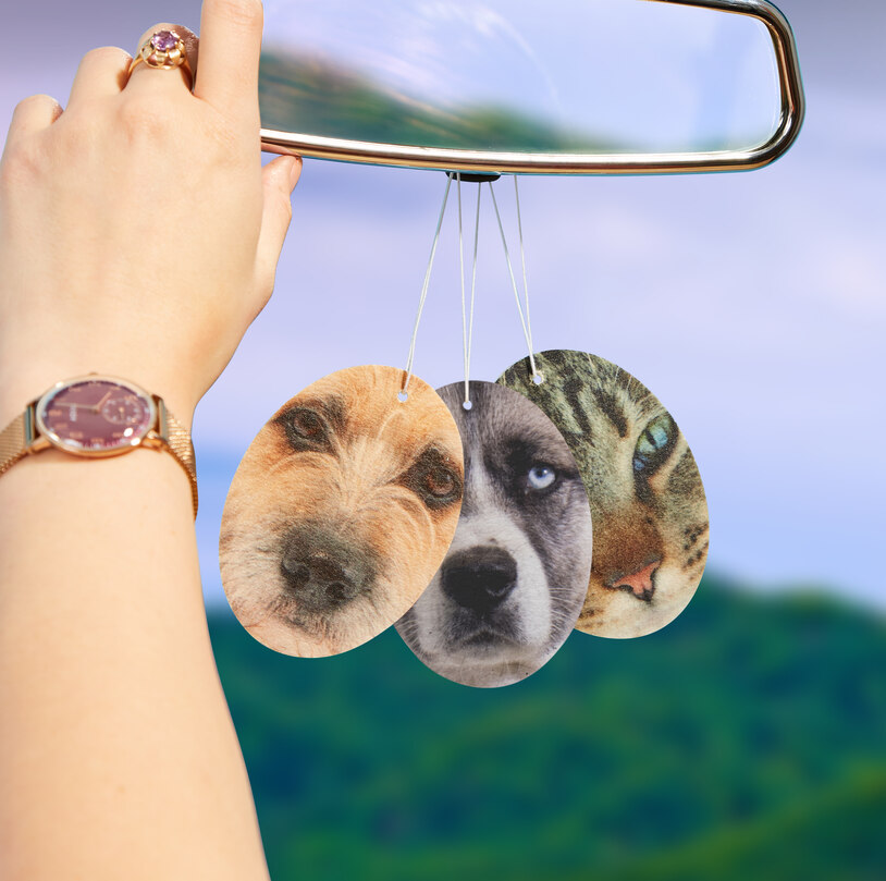 Pet Fresh Face – Personalised Pet Air Freshener