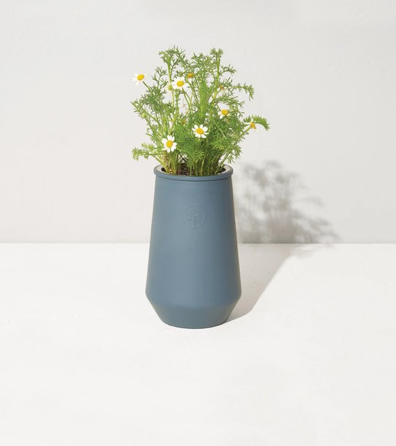 Tapered Tumbler for Chamomile