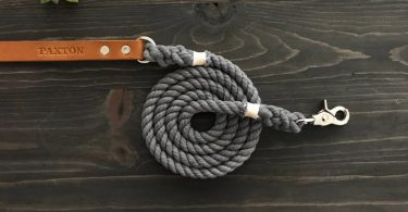 Single Color Dog Leash Solid Color Dog Leash with Leather