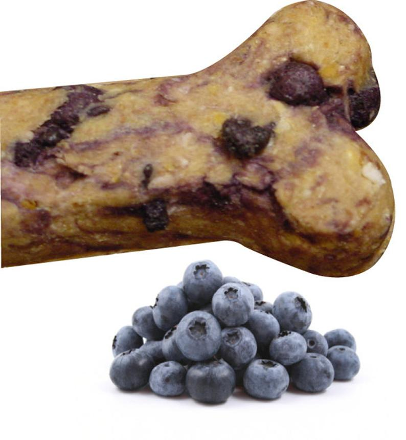 Blueberry Gourmet Dog Treats