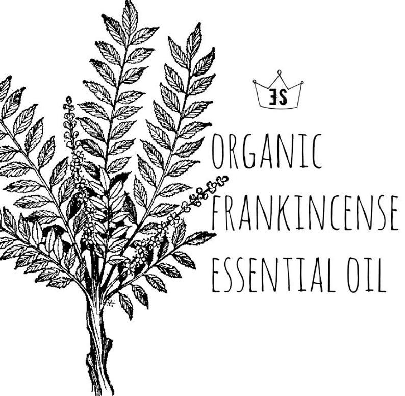 Organic Frankincense Essential Oil  Frankincense Oil  Pure