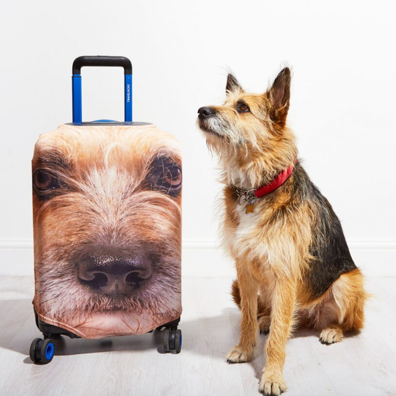 Pet Head Case – Personalised Pet Luggage Cover