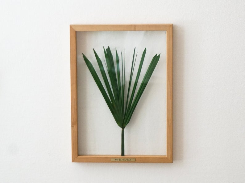Green Papyrus Pressed Leaves Plant Lovers Gift Idea