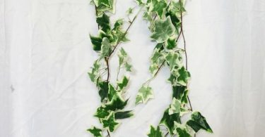 JennysFloweShop 6'L Silk Ivy Artificial Garland Greener